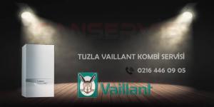 Tuzla Vaillant Kombi Servisi - Bakımı