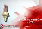 Kombi Sıcak Su Sensörü (NTC) Nedir